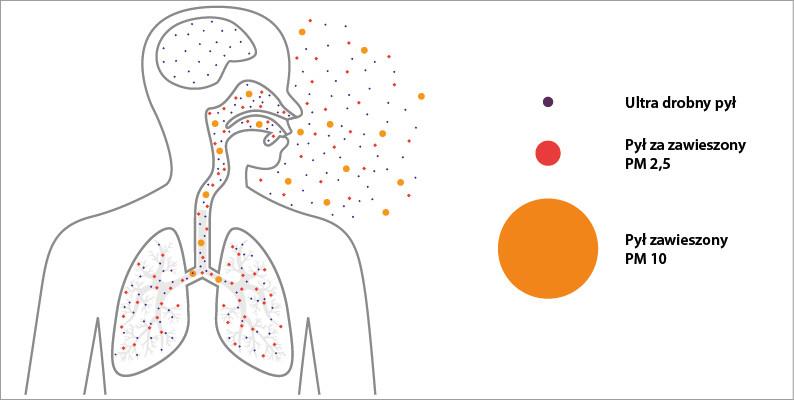 Kemper-figel-Do jakich przestrzeni w ludzkim organizmie, docierają zanieczyszczenia spawalncze